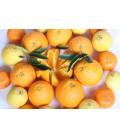 Caja mixta de Naranjas de Mesa y Mandarinas (10 kilos)