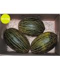 Melones de primerísima calidad (caja 12-14 kg)