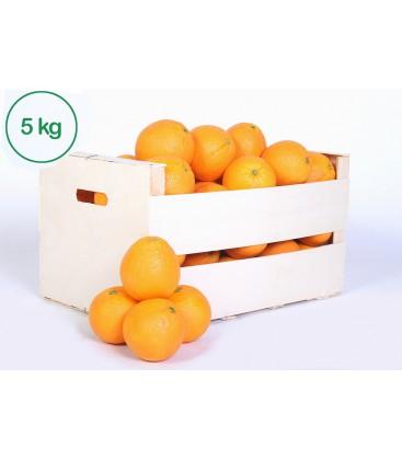 Naranjas para zumo (5 kilos)